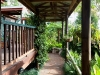 Cool covered walkway to rooms at Tamborine Mountain Bed and Breakfast