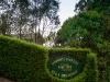 Hedge with Tamborine Mountain Bed and Breakfast sign