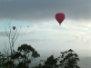 Hot Air Balloons floating over Tamborine Mountain in the early morning light
