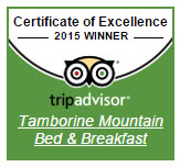 Badge 2015 Certificate of Excellence TripAdvisor