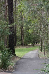 Picnic Area at Cedar Creek Section National Park