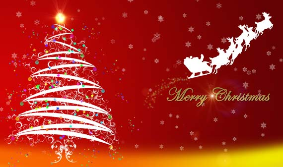 Christmas Greetings from Tamborine Mountain Bed and Breakfast