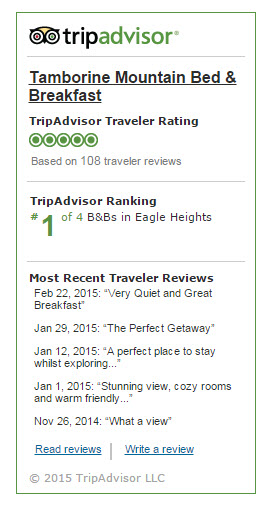 reviews widget tripadvisor