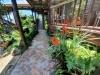 tmbb-covered-walkways-amidst-lush-gardens