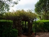 Gateway and hedge at Tamborine Mountain Bed and Breakfast