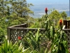 tmbb-garden-views-over-the-gold-coast