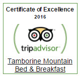 badge-tripadvisor-certificate-of-excellence-2016