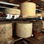 amazing-cheeses-locally-made-on-mount-tamborine